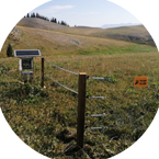 采用电子围栏响应国家环保政策