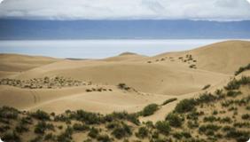 草原沙漠化日益严重