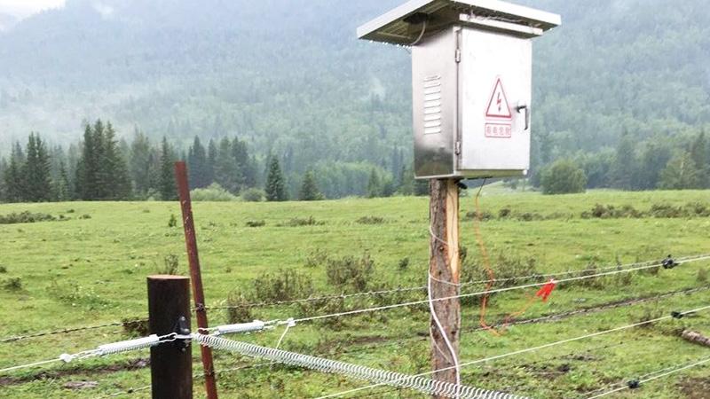 红池坝国家森林公园:电子围栏,认准小牛看家