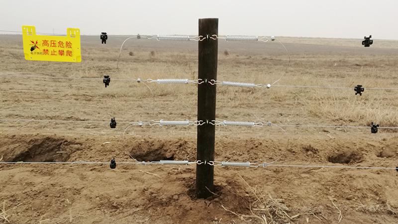畜牧电子围栏,阿旗天山工程只推荐小牛看家