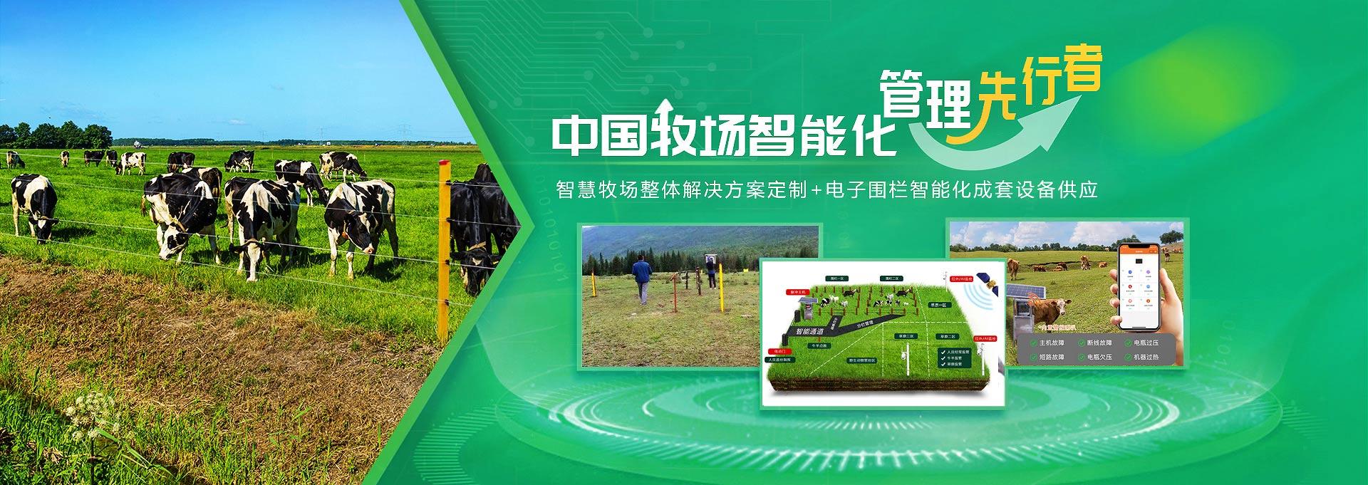 小牛看家-中国牧场智能化管理先行者