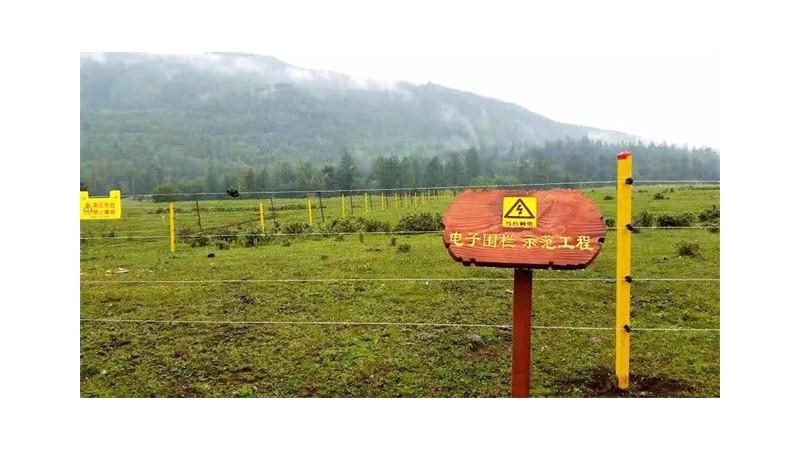 畜牧养殖围栏哪种好?脉冲电子围栏对畜牧养殖的优势